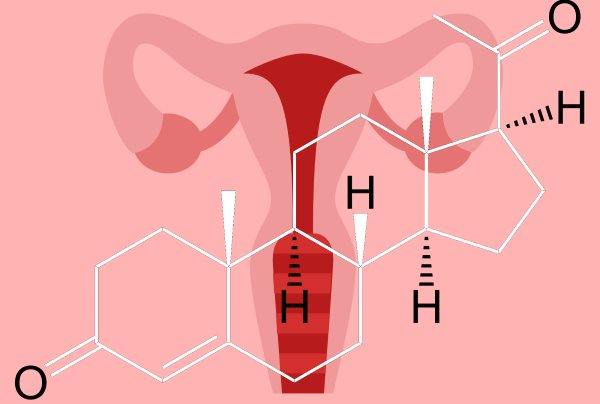 progesteron hormon