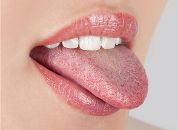 kandida beo jezik
