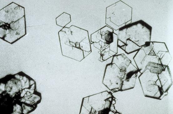 kristali u mokraci