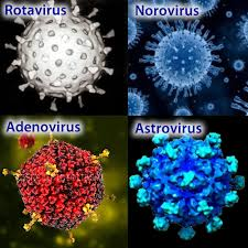 stomacni grip uzroci