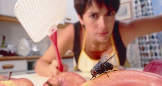 kako se resiti muva